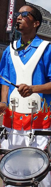 hawaii muziek band